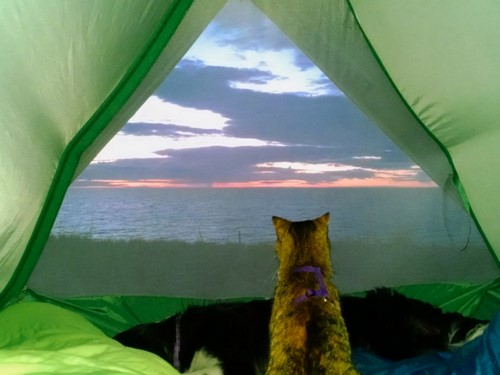 camping-chat-1