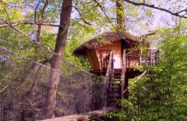 glamping-cabane-arbres-insolite