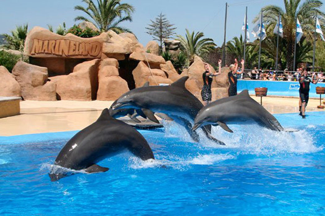 Marineland Catalogne